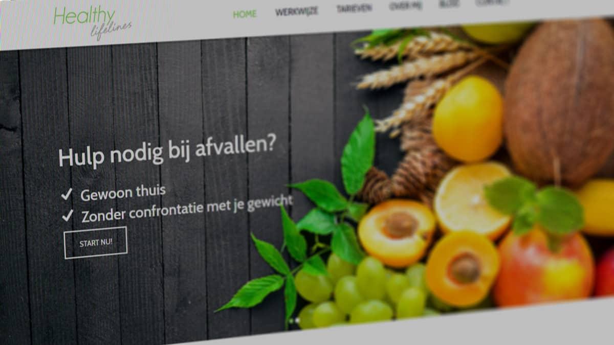 Healthy Lifelines website
